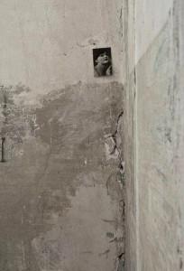 Luigi Poiaghi - Ritratto per assenza