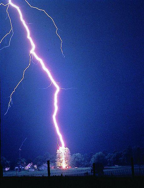459px-Lightning_hits_tree