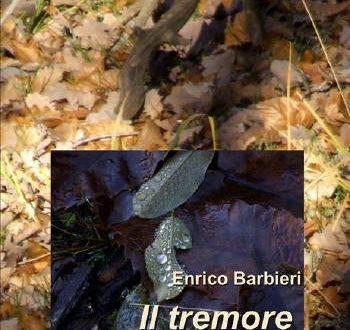 Enrico Barbieri – Il tremore della Terra – ISBN 978-88-98677-59-7, pp.56