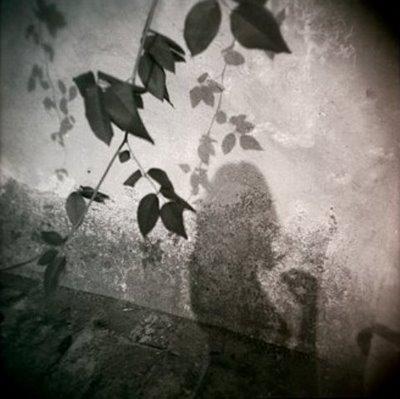 ombra31