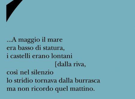 """Nota di Ivano Ferrari su """"Le prime volte non c'era stanchezza"""" di Luigi Finucci"""
