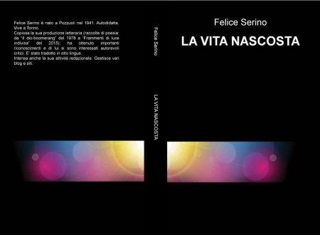 """nota di lettura a """"La vita nascosta"""" di Felice Serino (di Giovanni Perri)"""