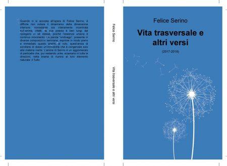 """Recensione di Donatella Pezzino a """"Vita trasversale"""" di Felice Serino"""